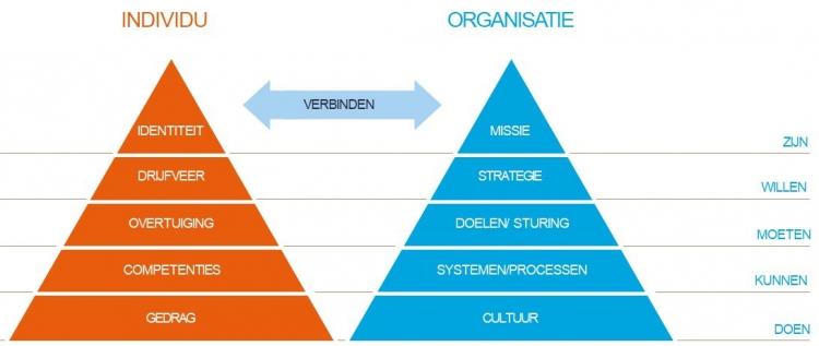driehoek organisatie